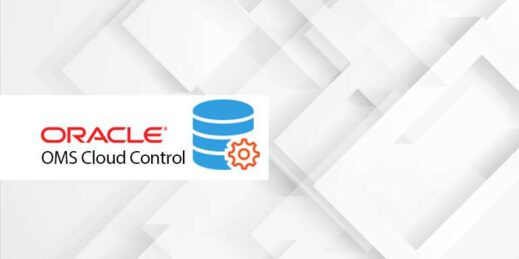 Oracle cloud control